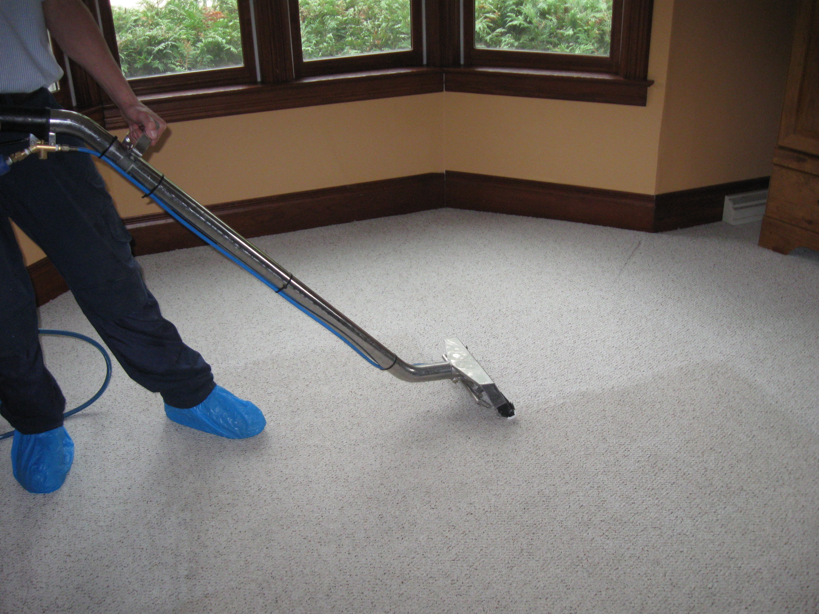 carpet-cleaner-fwcc